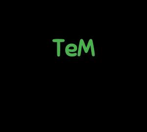 TeM-logo (1)